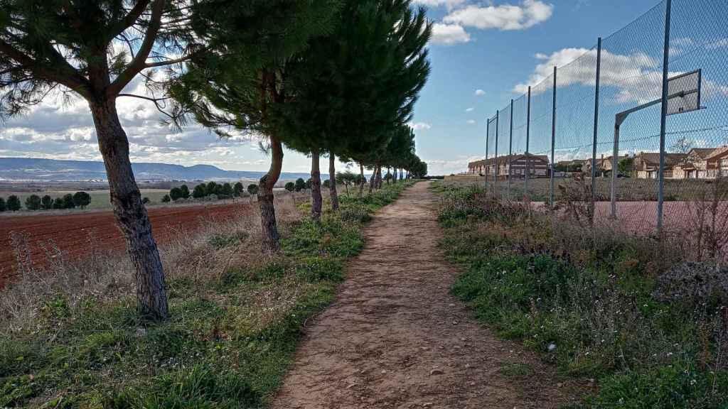 Parque en el que Miriam sacaba a sus perros. A la izquierda está el camino donde apareció muerta.