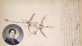 Boceto de esqueleto de plesiosaurio con notas manuscritas y retrato de Mary Anning. Wikimedia Commons.
