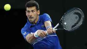 Novak Djokovic, en el Open de Australia