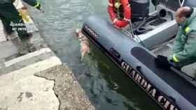 Un momento del rescate en el puerto de Santander