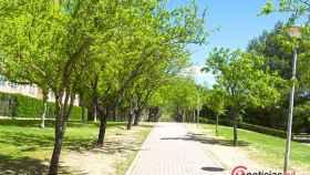 Valladolid-primavera-reportaje-atipica-flores-13