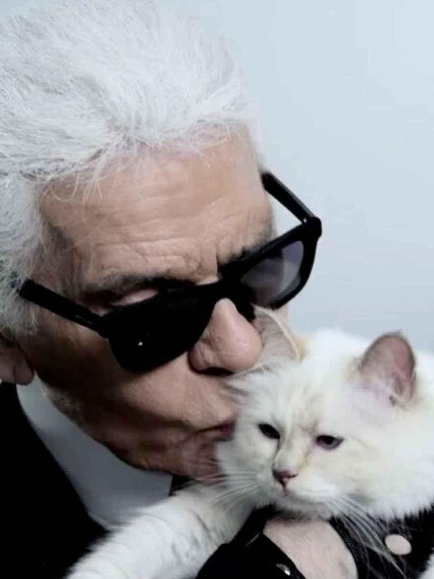 Choupette era la fiel acompañante del icónico diseñador.