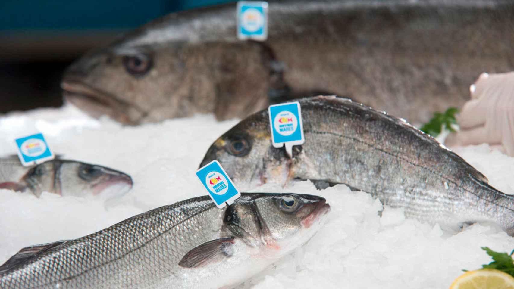 pescado-en-la-dieta-equilibrada