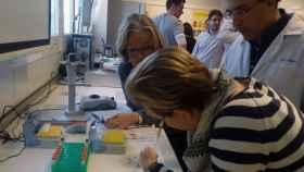 Este nuevo test de alergias a antibióticos se está validando en la Universitat Politècnica de València.