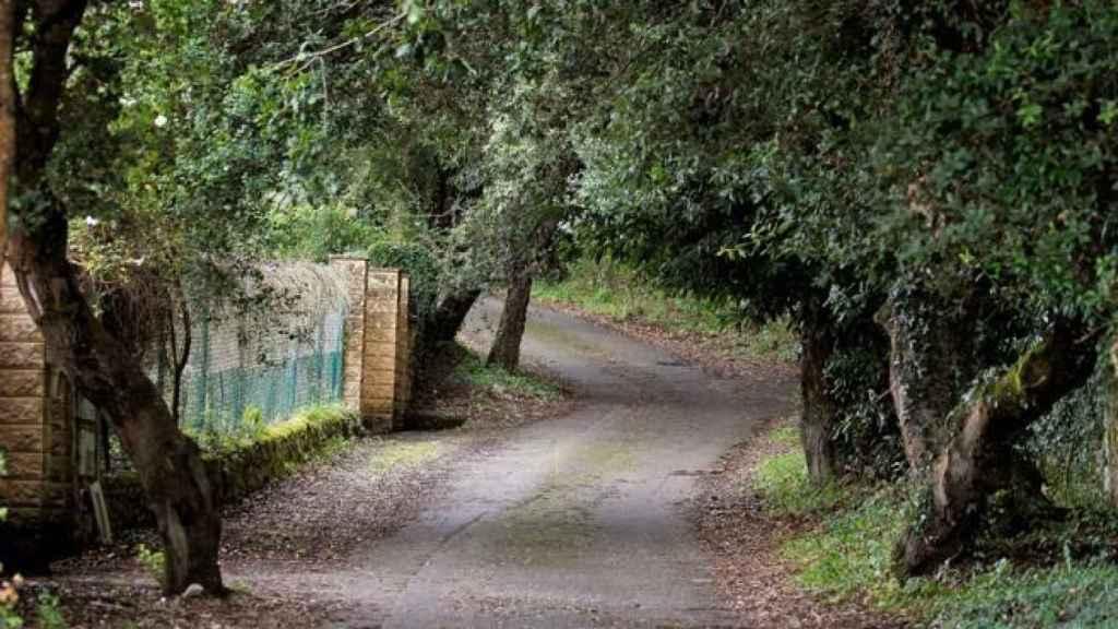 Camino de acceso a la casa de Ardines en Belmonte de Pría, donde apareció el cuerpo.