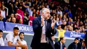 Pablo Laso en el choque ante el MoraBanc Andorra