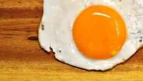 Los huevos son alimentos muy ricos en proteínas.