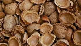cscaras-de-almendra-frutos-secos-biomasa