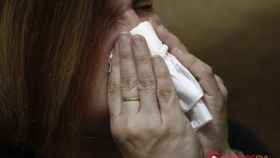 gripe-castilla-y-leon-2