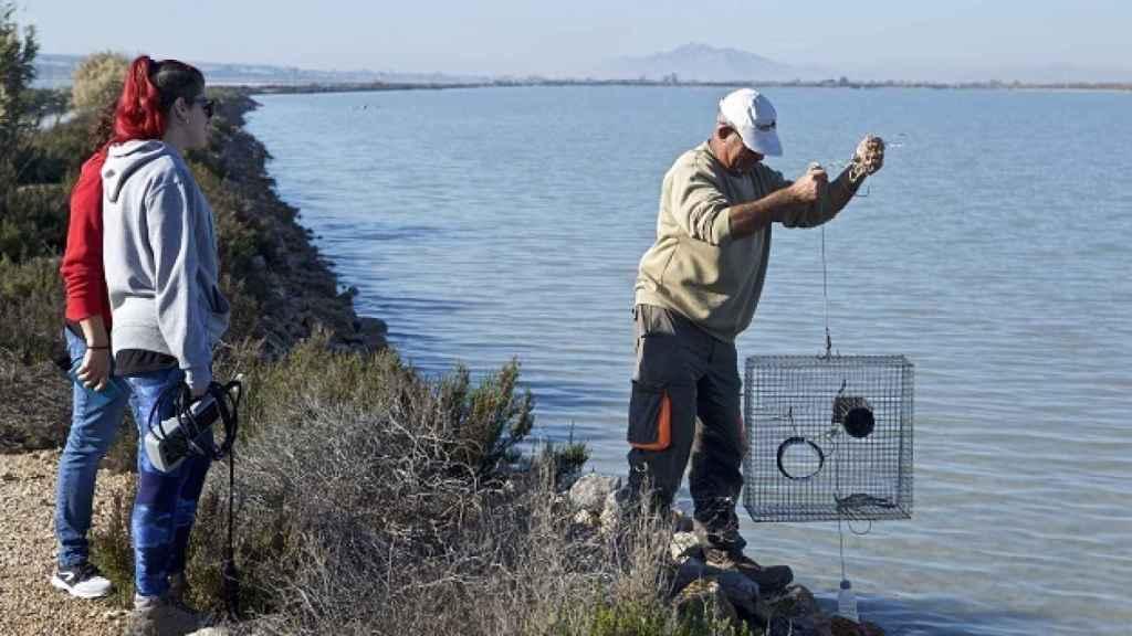 Pesca de cangrejo azul. Foto de CIMAR