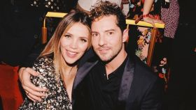 Rosanna Zanetti y David Bisbal serán padres en las próximas semanas.