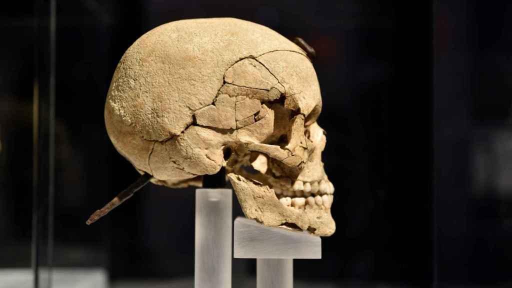 El cráneo del joven guerrero, visto de perfil.