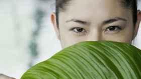 Hay productos orgánicos para todas las situaciones de nuestro día a día.