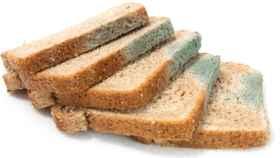 Unas rebanadas de pan de molde enmohecido.