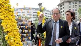 Torra en el día de Sant Jordi, con rosas amarillas