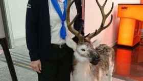 Herminia Bedinelli mientras trabajaba en el aeropuerto de Son Sant Joan de Palma
