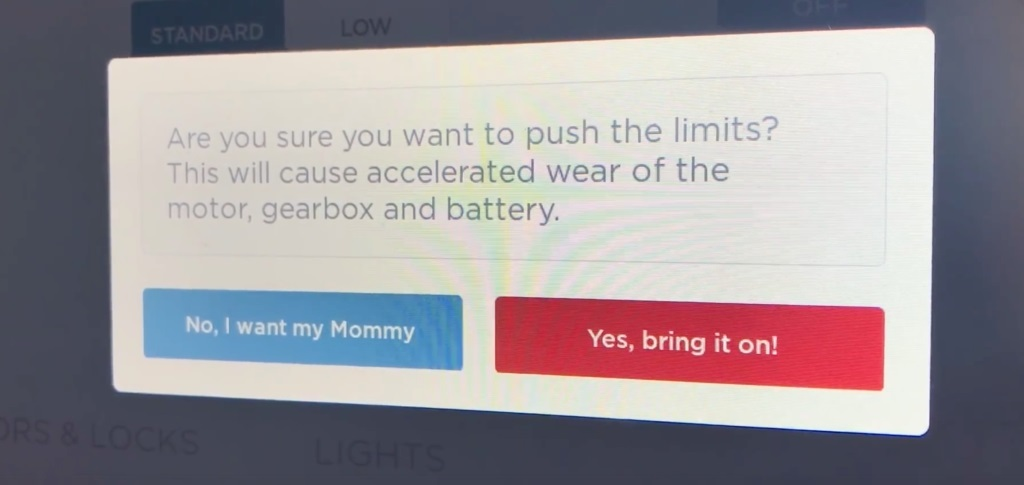 Mommy Tesla