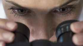 Una investigadora observa en un microscopio.