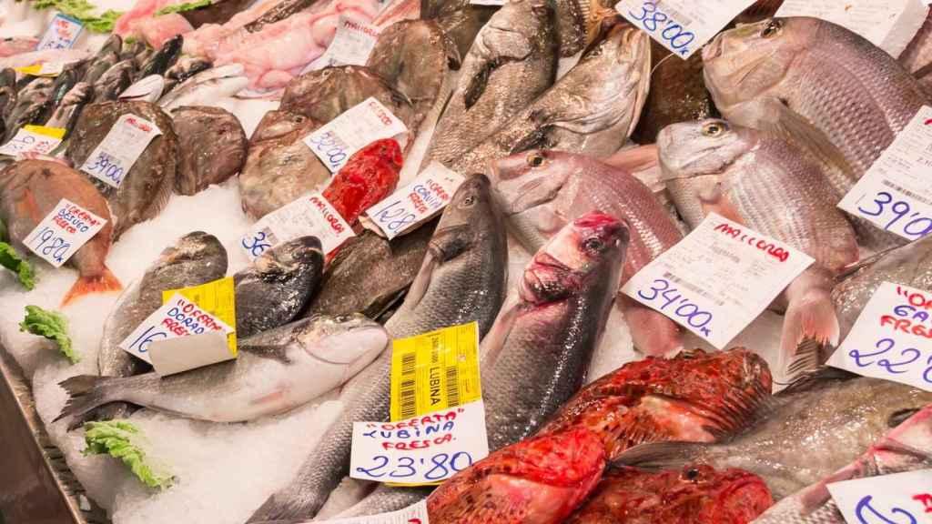 Un montón de pescados en el mostrador de una pescadería.