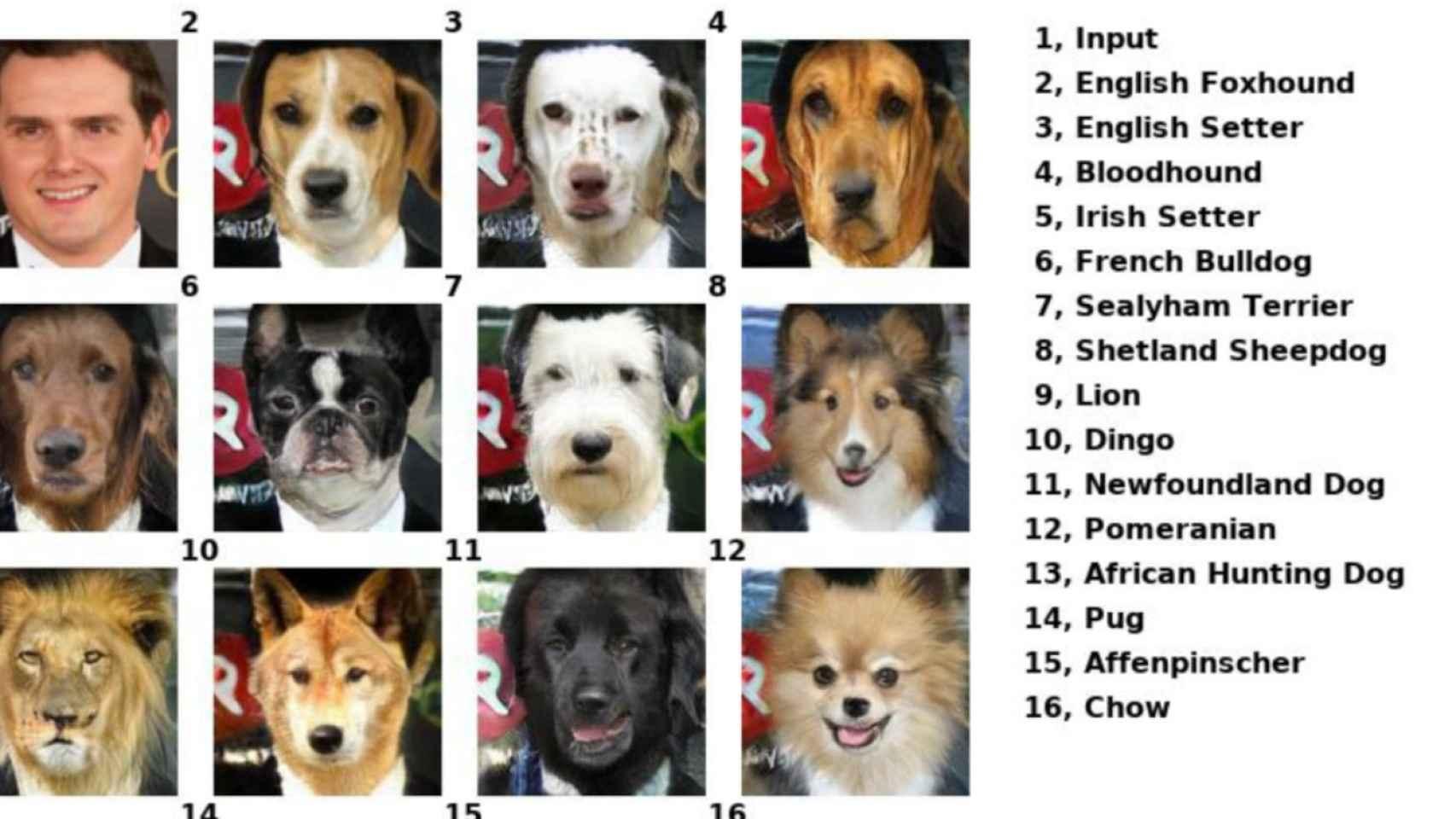 inteligencia artificial animales 1