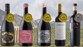 Lar de Paula, os vinos de una bodega alavesa que arrasan a nivel internacional