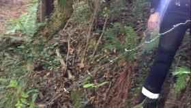 Alambre de espino colocado en un camino de Mieres