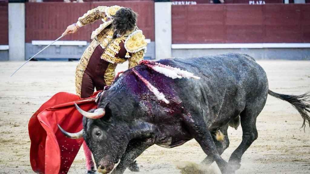 Trincherilla de Roca Rey a 'Madroñito', un gran toro de Adolfo