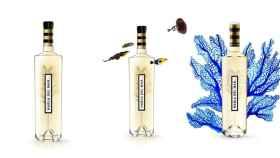 Habla del Mar, el vino submarino que te trasladará a la costa en cada sorbo