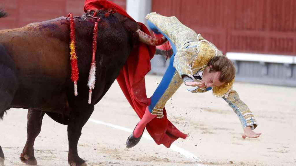Momento de la cornada en la pierna derecha a Román Collado, en Las Ventas.