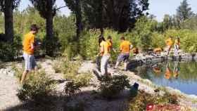 voluntariado ambiental castilla y leon 1