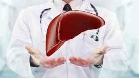 La hepatología se ocupa del hígado.