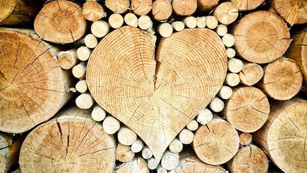 Tallar madera puede ser un buen pasatiempo