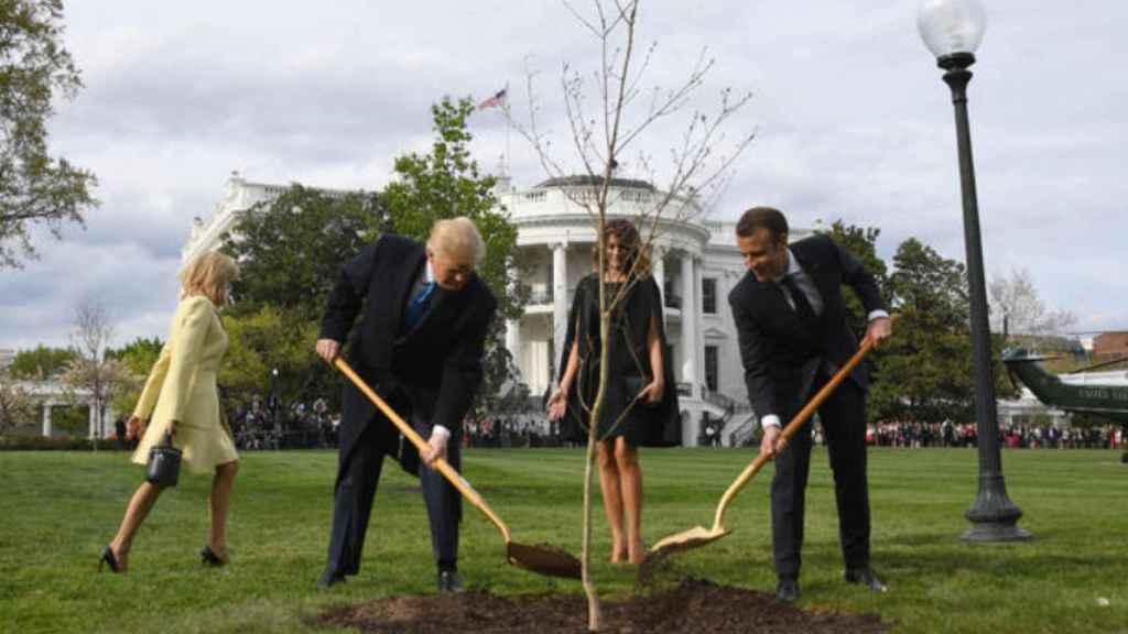 Trump y Macron plantando el árbol.