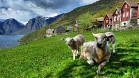Noruega, destino sostenible