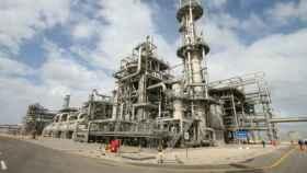 La planta de Damietta en Egipto.