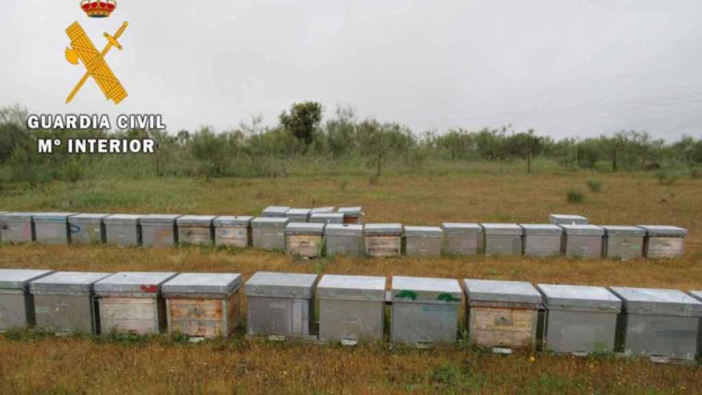 Las colmenas involucradas en el presunto robo. Foto: Guardia Civil.