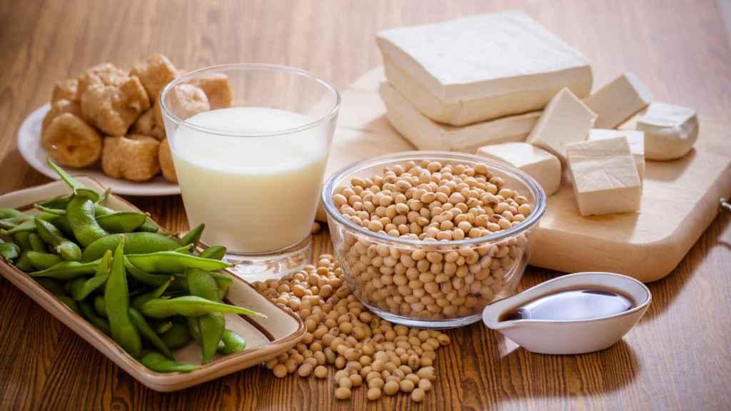 Soja, tofu y otros productos derivados © Yuttadanai Mongkonpun.