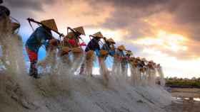 Trabajadores en campos de cultivo de Vietnam.