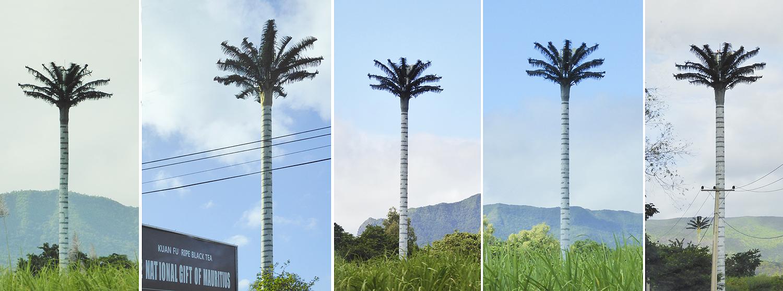 Las nuevas y artificiales palmeras digitales de Mauricio.