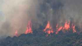 Incendio declarado en el municipio de Almorox en Toledo, que se ha extendido a Cadalso y Cenicientos (Madrid).