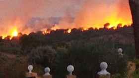 Incendio en el municipio de Almorox (Toledo).