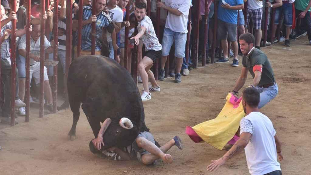 El toro Judío mató de tres cornadas a Pedro durante las fiestas de Coria
