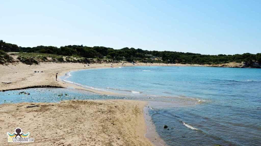 La playa Rec del Molí (Gerona) es una de las 10 peores de España, según EL ESPAÑOL