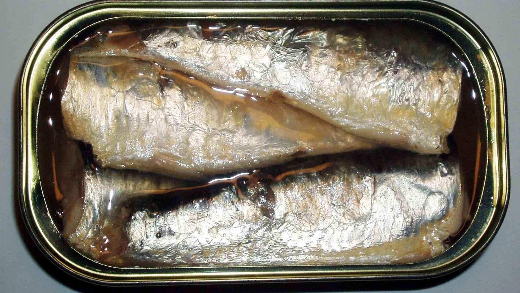 Estos son los beneficios que esconde una simple lata de sardinas