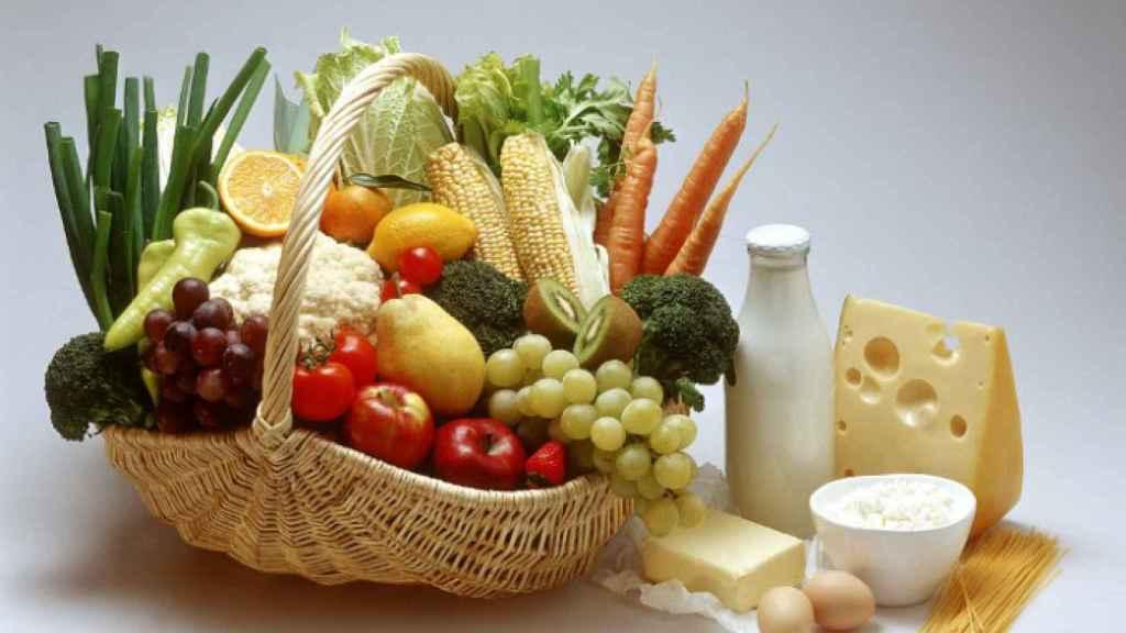 Vegetales, hortalizas, frutas y lácteos.