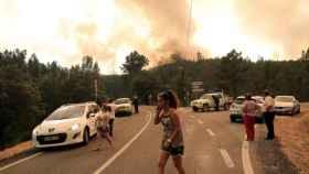 El frente de llamas que ya ha cruzado la carretera que va desde Cardigos hasta Arganil, en Portugal.