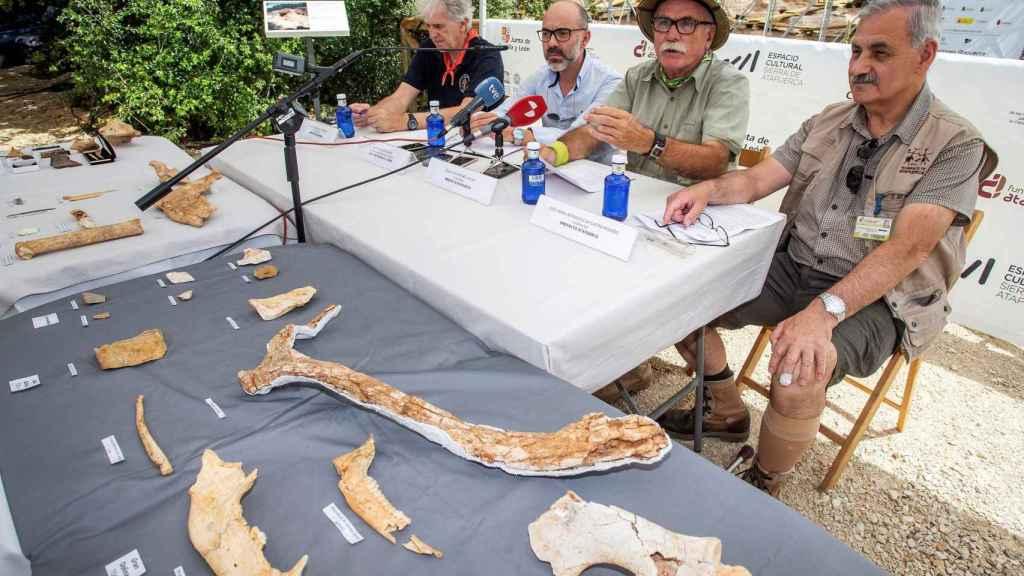 Los codirectores de los yacimientos de Atapuerca, junto al consejero de Cultura y Turismo de la Junta de Castilla y León, Javier Ortega enseñan los hallazgos.