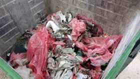 Residuos sanitarios vertidos en su momento en el río Júcar en Cuenca. Imagen de archivo