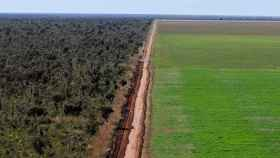 Una carretera hace de frontera entre la selva y un cultivo de soja en Ribeiro Gonçalves, Piauí, Brazil. HANDOUT WWF