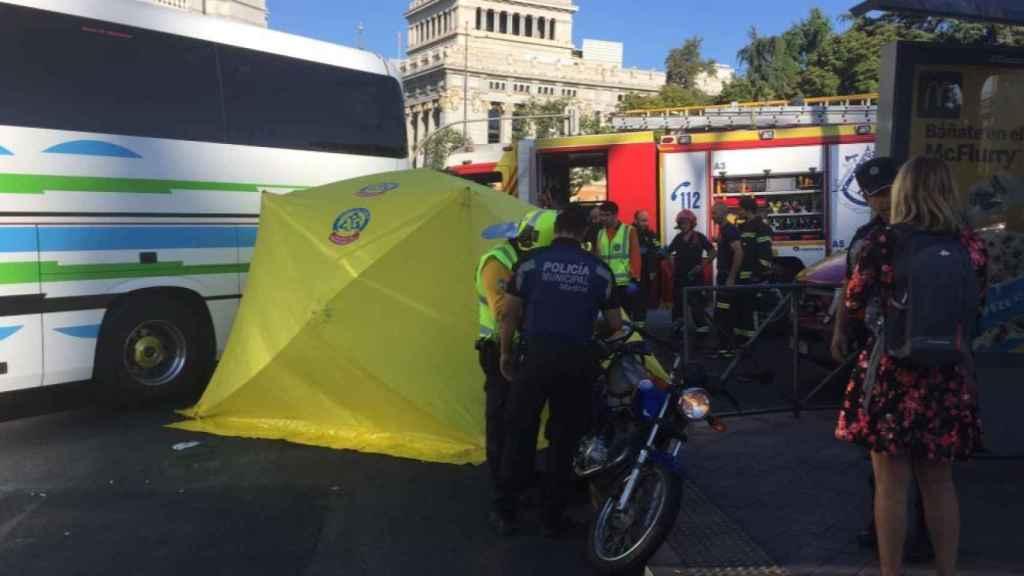 La Policía Municipal se ha hecho cargo de la investigación.
